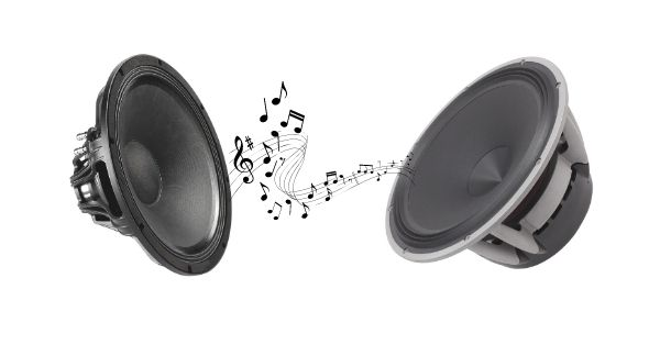 Differences Between A Subwoofer And Speaker